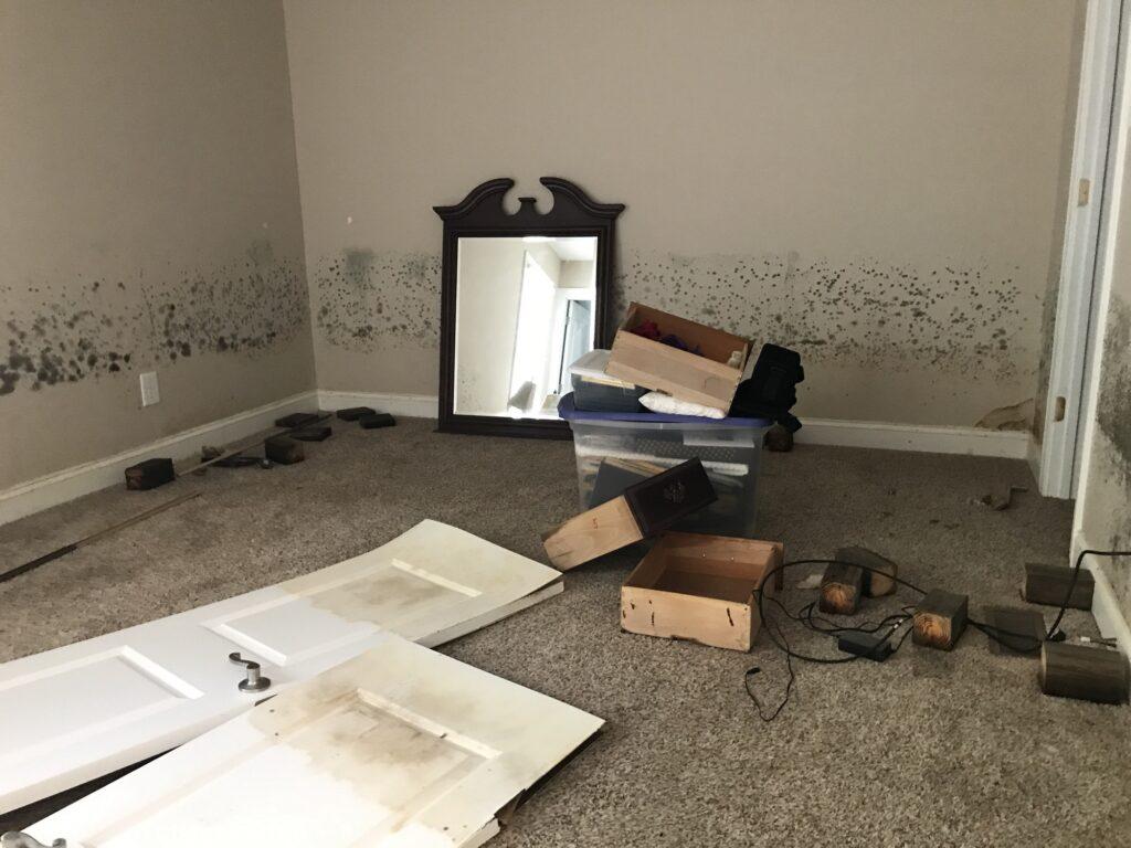 Interior of a flood damaged house in a resident neighborhood near Lumberton, North Carolina.